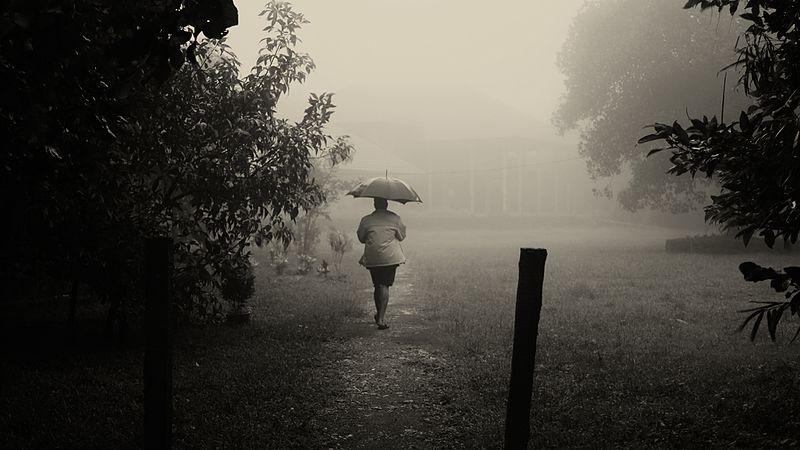Very heavy rainfall expected in parts of Chhattisgarh